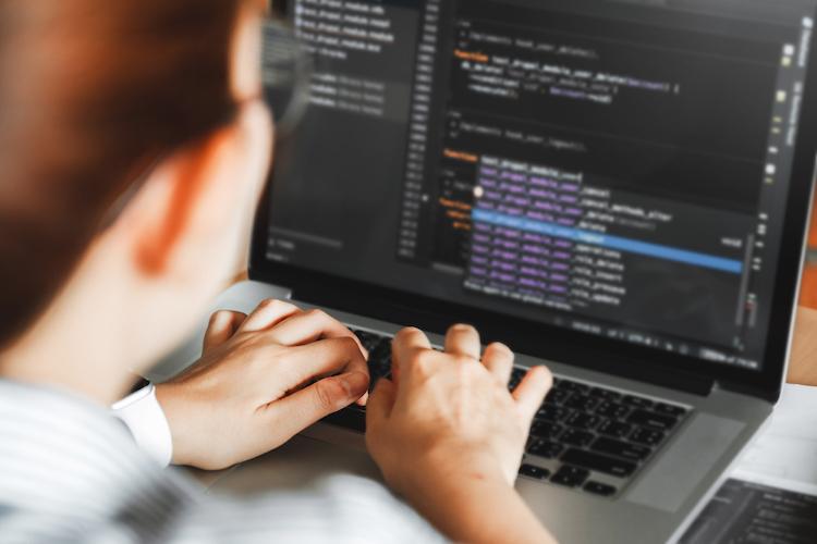 You-Need-A-WordPress-Developer-If