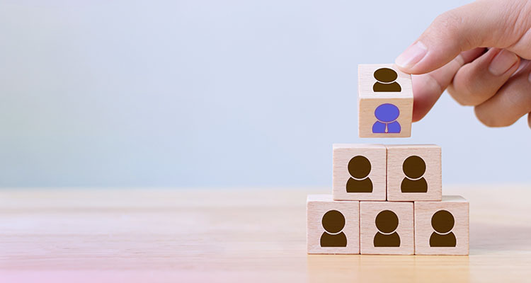 Employee development and retention
