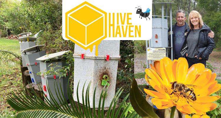 Hive Haven