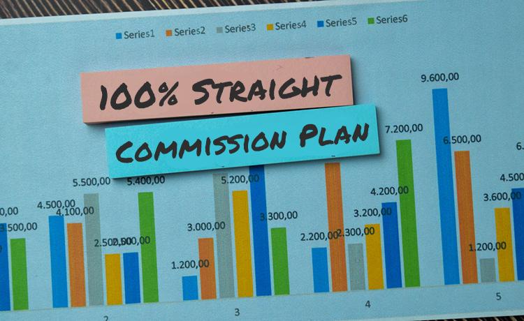 100_-Straight-Commission-Plan